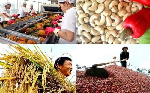 Trung Quốc vẫn là thị trường xuất khẩu lớn nhất của nông sản Việt