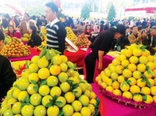 Tổ chức hội nghề nghiệp: Điểm tựa đưa nông dân vào chuỗi giá trị
