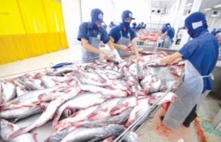 Đồng Tháp: Tiếp vốn cho ngành thủy sản