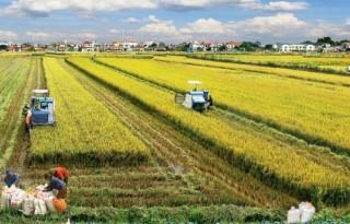 Ngành Ngân hàng Thái Bình: Đồng hành cùng kinh tế địa phương