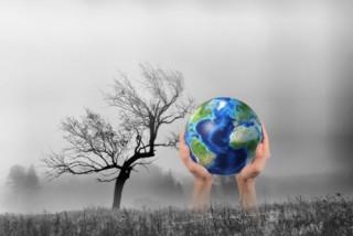 Nhiều vốn cho các dự án môi trường