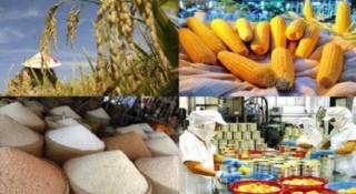 Nông sản Việt vượt sóng tăng xuất khẩu