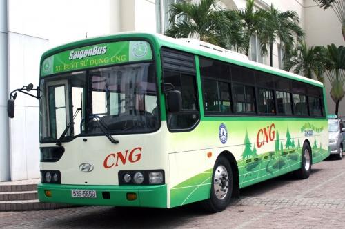 TP.HCM: Hỗ trợ lãi vay để thay xe buýt