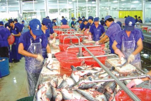 Thủy sản phát triển thị trường ngách