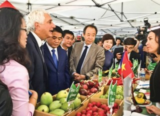Khoảng trống sở hữu trí tuệ trong nông sản Việt