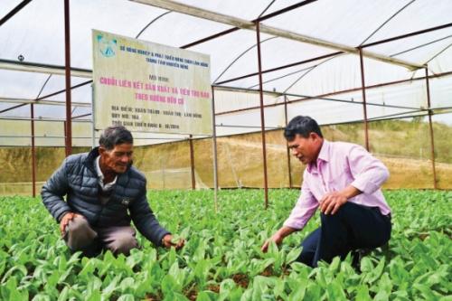 Để nông nghiệp hữu cơ cất cánh