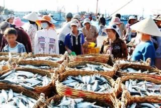 Rà soát nhu cầu cho vay, xử lý nợ bị ảnh hưởng do sự cố môi trường biển tại các tỉnh miền Trung