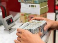 Thị trường tiền tệ tháng đầu năm: Ổn định và áp lực giảm đáng kể
