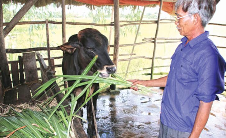 """Nguồn vốn Agribank """"tiếp sức"""" nhà nông đổi đời"""