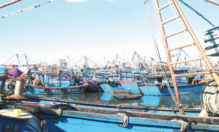 Ngăn khai thác hải sản bất hợp pháp từ... trên bờ