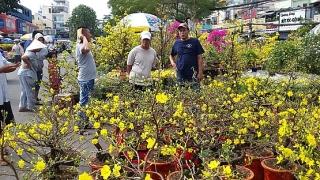 Tăng cường phòng chống dịch COVID-19 ở các chợ hoa Tết, hội hoa Xuân