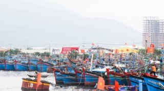 Khi chợ thủy sản thành điểm du lịch