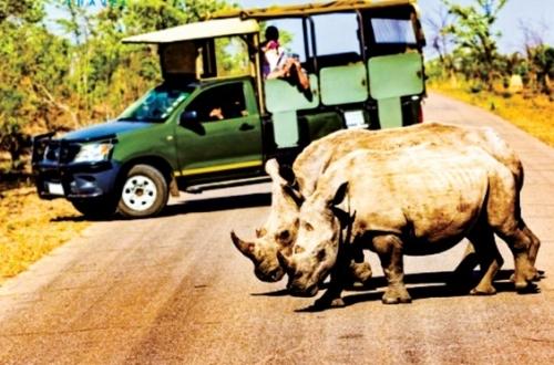 Đầu tư du lịch vào Nam Phi: Lợi thế lớn hơn rào cản địa lý