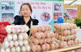 Lo thị trường trứng ảm đạm