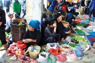 Xóa nghèo bền vững nhìn từ Y Tý - Bài cuối