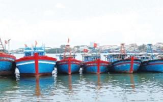 """BIDV Quảng Nam: Nỗ lực với """"tàu sáu bảy"""""""