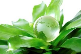 Các nước cần hành động vì phát triển bền vững