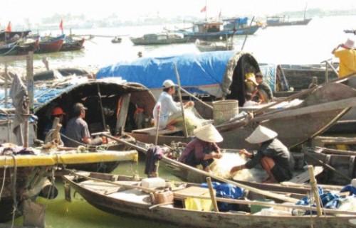 Lao đao dân biển miền Trung
