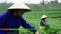 Agribank đồng hành cùng nông sản Việt