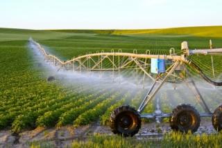 Lãi suất cho vay nông nghiệp CNC thấp hơn từ 0,5 - 1,5%/năm