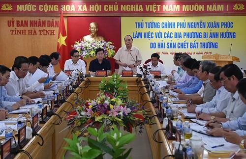 Thủ tướng chỉ đạo giải quyết sự cố hải sản chết bất thường