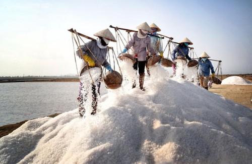 100kg muối chưa bằng bát phở bình dân