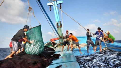 Để ngư dân vươn khơi, bám biển