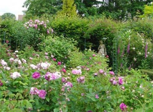 Khu vườn bí mật