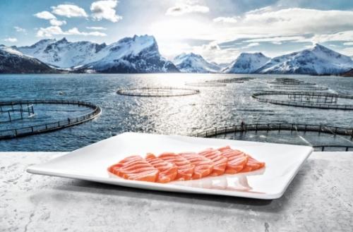 Bài học từ DN thủy sản Na Uy