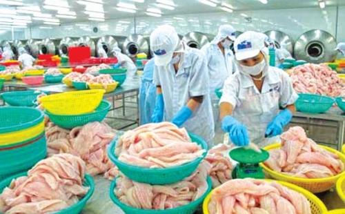 Kiểm dịch vẫn làm khó thủy sản xuất khẩu