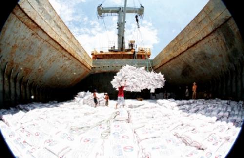Xuất khẩu gạo và những tín hiệu mới