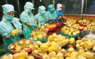 Tăng cường mở rộng thị trường xuất khẩu