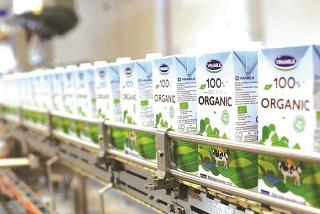 Vinamilk liên tục dẫn đầu ngành hàng sữa nước