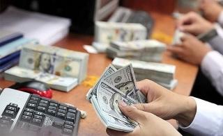 Tỷ giá ngày 19/5: Tỷ giá trung tâm quay đầu giảm mạnh
