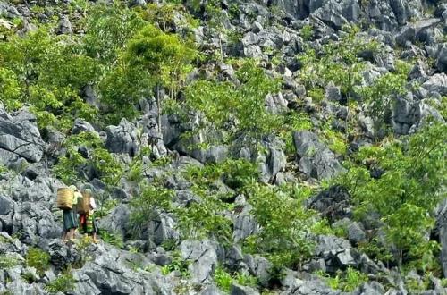 Công bố Quy hoạch xây dựng Công viên địa chất toàn cầu Cao nguyên đá Đồng Văn