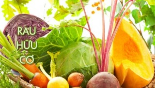 Thị trường thực phẩm hữu cơ tăng tốc