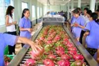 Cơ hội cho DN nông sản chuyển mình