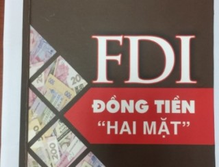 FDI qua lăng kính một chuyên gia