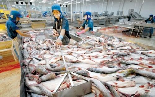 """Xuất khẩu """"tỷ đô"""" thủy sản vẫn thiếu"""