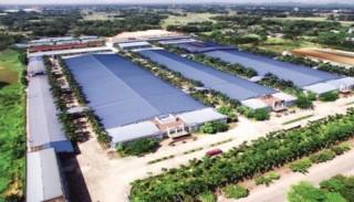 Biến Việt Nam thành trung tâm công nghiệp mới