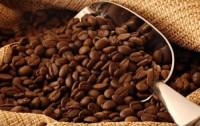 Đẩy mạnh xuất khẩu cà phê giá trị gia tăng cao