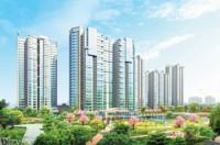 Hướng đến nhu cầu thực khi đầu tư bất động sản