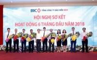 Lợi nhuận hợp nhất của BIC tăng trưởng 37%