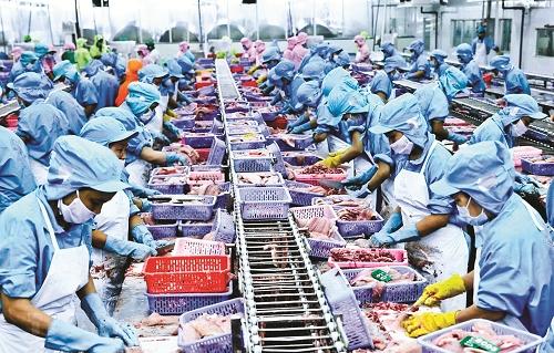 EVFTA: Cơ hội cho Việt Nam từ thông điệp thương mại mới của EU