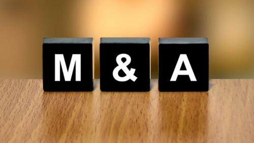 Kênh M&A vẫn sôi động
