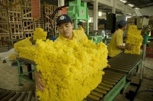 Vì sao phải nhập khẩu cao su?