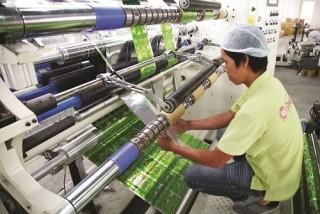 Giá các sản phẩm nhựa: Đứng yên, mặc giá nguyên liệu giảm