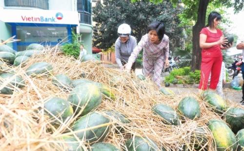 Giải bài toán tiêu thụ sản phẩm cho nông dân