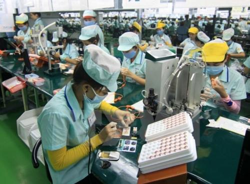 DN điện tử Việt đang ở đâu?