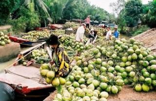 Tập trung vốn cho nông nghiệp, nông thôn